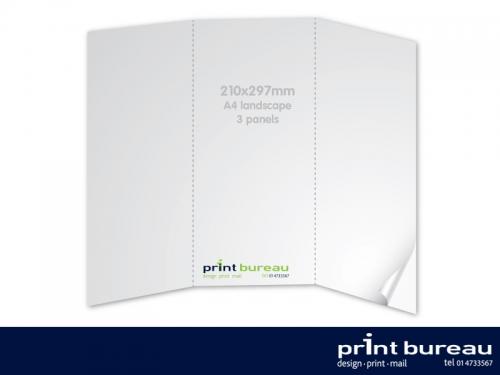 3 Panel DL Brochure/Leaflet