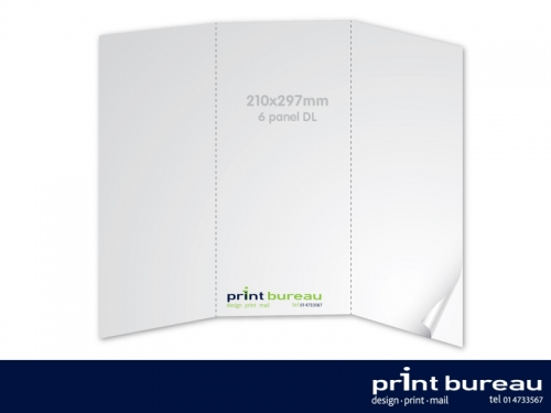 6 Panel DL Brochure/Leaflet