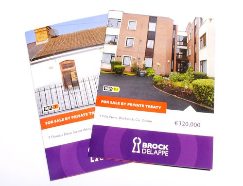 Broke Delappe Property Leaflet